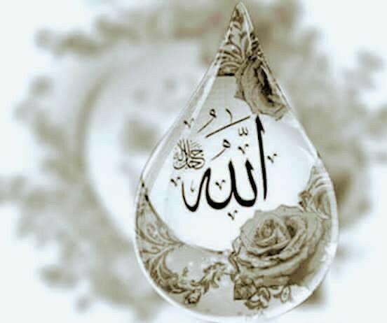 allah-muhammed-profil-resmi-3