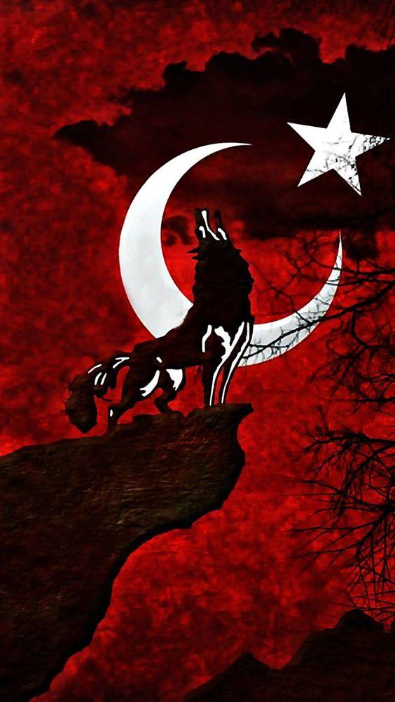 dini-turk-bayrakli-resimler-22
