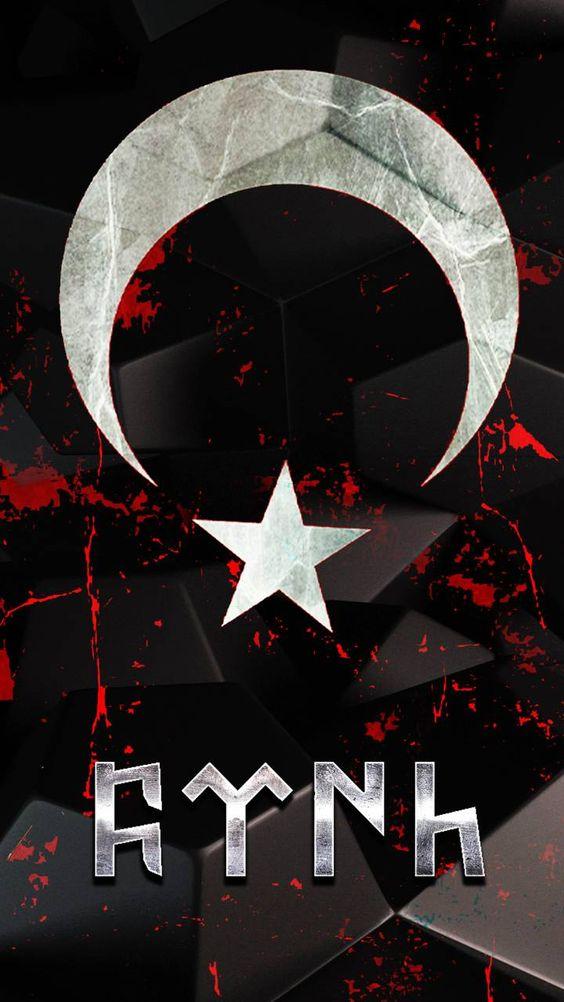 dini-turk-bayrakli-resimler-25