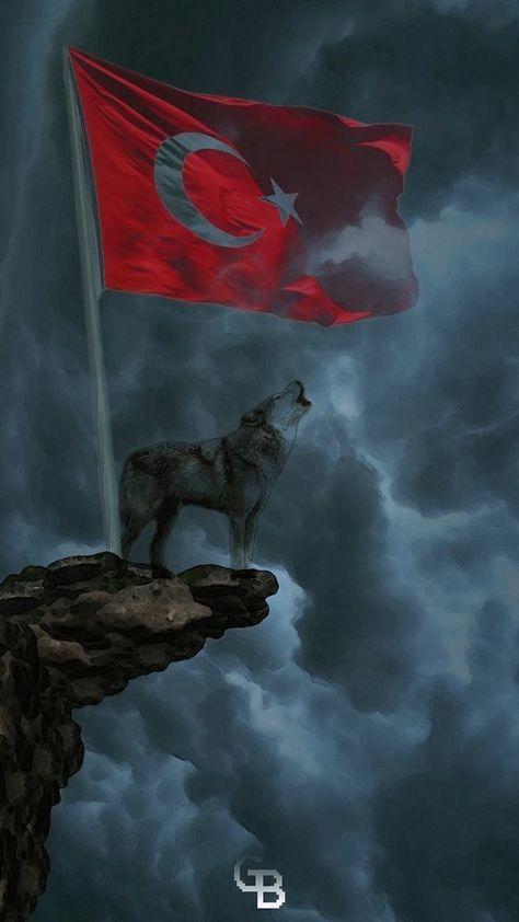 dini-turk-bayrakli-resimler-43